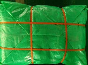 Anti-UV Fire Retardant PE Tarpaulin for Roof Cover Tb010 pictures & photos