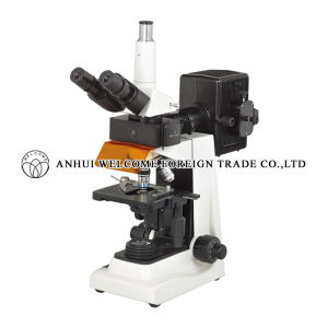 Laboratory Microscope for Laboratory Use pictures & photos