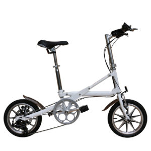 Carbon Steel Folding Bike/Aluminum Alloy Folding Bicycle/Electric Bicycle/Kid Bike/Single Speed Bike/Variable Speed Vehicle pictures & photos
