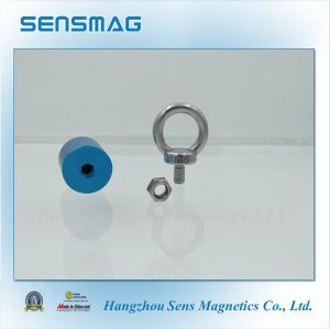 Manufacture Customized Permanent Magnetic NdFeB Magnet Assembly with Aluminum Oxide pictures & photos