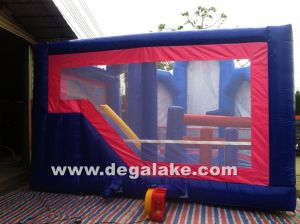Inflatable Frozen Bouncy Slide Combo, Bounce Castle, Jumping Bouncer pictures & photos