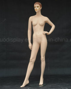 Fashion Female Mannequin for Fashion pictures & photos