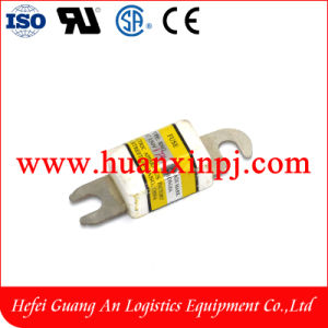 175A Forklift Fuse pictures & photos