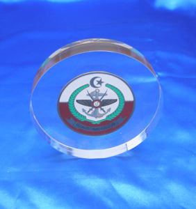 Customize Wholesale New Clear Acrylic Award Trophy Employee Recognition Gift pictures & photos