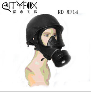 Safety Protection Gas Mask with Helmet pictures & photos