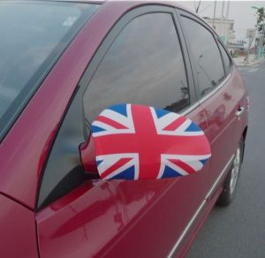 Auto Mirror Cover Car Rearview Mirror Cover pictures & photos
