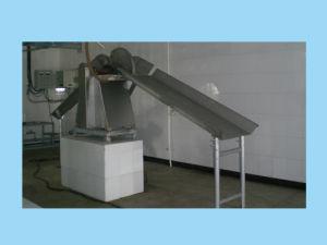 Pig Slaughter Equipment: Type Bridge Splitting Saw (QP-600)