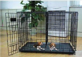 Dog Cage with Divider Panel (DG-36)