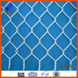 Freeway Railway Wire Mesh pictures & photos