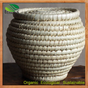 Rattan Tea Storage Basket Tea Crates Barrel pictures & photos