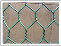 Plastic Coated Hexagonal Wire Mesh pictures & photos