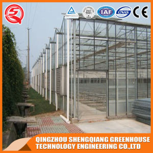 Agriculture PC Sheet Greenhouses for Vegetables/Flower pictures & photos