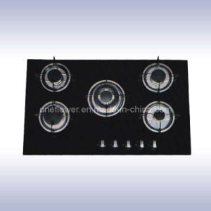 Gas Stove (DTL-04)