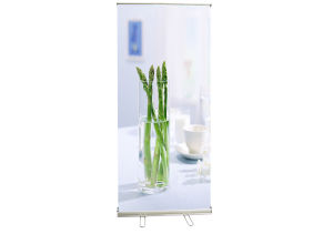 Banner Display- Roll up Dw-R-S-8 pictures & photos