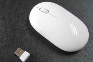 Wireless Mouse (YH-RF01)