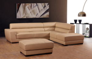 Fashion Sofa (H666)