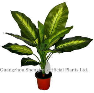 Artificial Potted Tree/Potted Rohdea Japonica (with white heart)