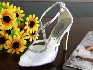 Fashion Lady Wedding Shoes (Ogt0260)