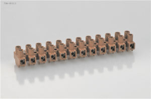 12 Poles Double Entry Terminal Block (T04-12) pictures & photos