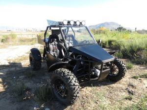 800cc Buggy Go Kart 4WD (LZ800-4)