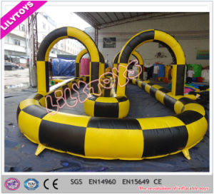 Outdoor Interesting Inflatable Air Track for Car or Walking Ball pictures & photos