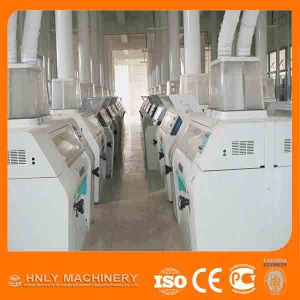 2017 Hot Sale 60t Per Day Maize Grinding Mill Price pictures & photos