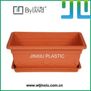 Rectangle Plastic Flower Pot Bonsai