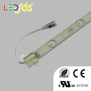 DC12V IP68 Waterproof 2835 SMD LED Strip Light pictures & photos