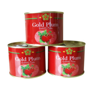 Canned Tomato Paste (70g-4500g)