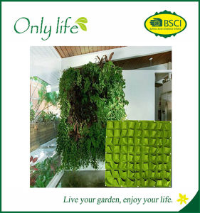 Onlylife BSCI Audit New Multi-Pockets High Quality Vertical Plant Pots pictures & photos