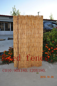 Reed Fence - 5