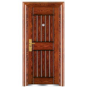 Hand-Made Finish High Class Steel Door (FX-C0141) pictures & photos