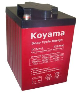 High Capacity 225ah, 6V Deep Cycle Boat Battery Floor Washer Battery DC225-6 pictures & photos