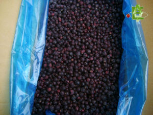 Frozen Blackcurrants