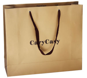Paper Bags with Handles (YY--B0040) pictures & photos