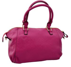 Hot Sell Ladies Tote Handbags (365C)