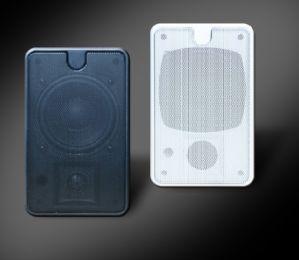 Wall Speaker, Wall-Mounted Loudspeaker in Wall Speaker (YZ-212)
