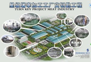 Slaughterhouse Turn Key Made in China pictures & photos