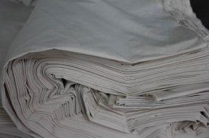 Hemp/Cotton Canvas in Stock