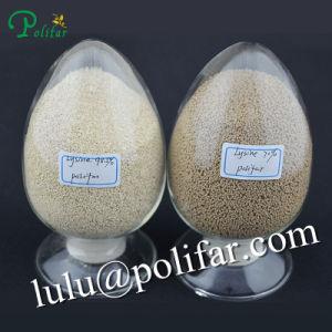 Supplement Amino Acids - Lysine 70% Sufate pictures & photos