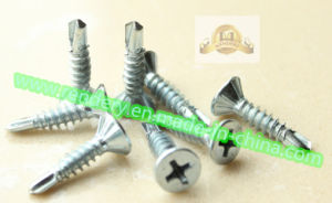 Phillips Drive Flat Head Self Drilling Screw pictures & photos