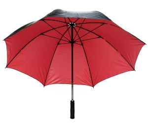 Hot Sale Promotion Umbrella/Fibreglass Advertising Umbrella (75G276-1)