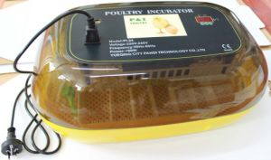 Egg Incubator pictures & photos