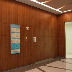 4mm and 6mm Compact Laminate Phenolic Resin Wall Panel pictures & photos