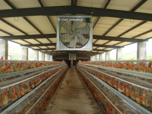 "54"" Greenhouse Cooling System Chicken Fan Poultry Exhaust Fan pictures & photos"
