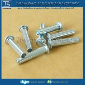 M3-M16 Flat Head Hollow Rivet pictures & photos