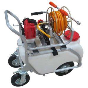 Trolley Gasoline Engine Power Sprayer, Garden Power Sprayer with CE (TF-650R) pictures & photos