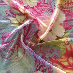 Printed Silk Ggt and Silk Organza