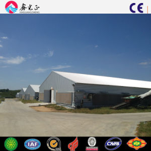 Steel Poultry House/Chicken House with Equipment (PCH-14323) pictures & photos