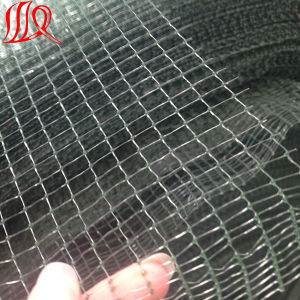 Plastic Net Type Plastic Fence Net pictures & photos